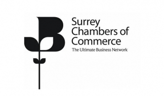 Surrey Chambers - Post Brexit Transition Support