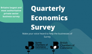 Quarterly Economic Survey Q2 2020